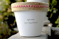Spruce Springsteen by Plant Puns on Etsy