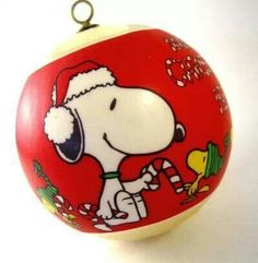 Merry Christmas Snoopy and Woodstock!