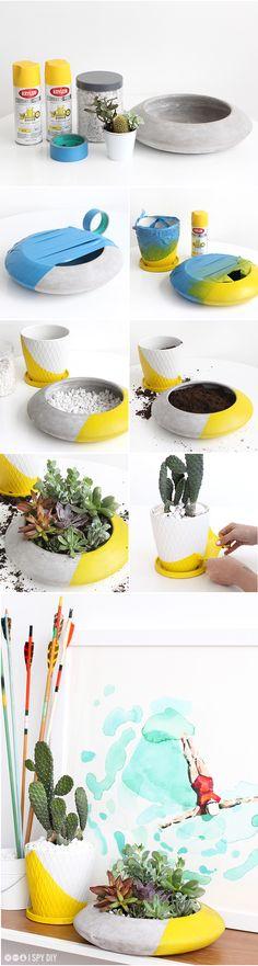 » MY DIY | Colorblock Sunny Succulent Garden