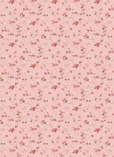 rose pink wallpaper