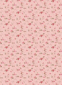 rose pink wallpaper