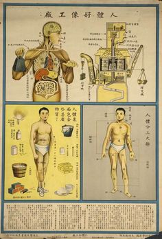 Understanding the human body Public Health Posters (1933)