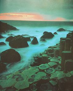 The Giant's Causeway / Atrim County, Northern Ireland.