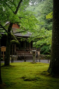 one of the many garden areas at the Sanzen-in Temple (三千院), Kyoto Japan