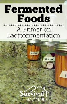 Fermented Foods - A Primer on Lactofermentation With all the talk about fermented foods, I decided to learn more about lactofermentation to add another entry into my food preservation book of knowledge. #FermentingFoods, #Fermentools, #Lactofermentation