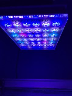 Uk Marine Lighting Orphek Led Products Can Now Be Purchased In The At