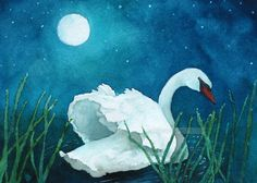 Swan in a moonlit pond This is an archival fine art giclee print of my original watercolor painting. Size: 8 x 10 Medium: Giclee Print of Kids Watercolor, Watercolor Mixing, Green Watercolor, Watercolor Flowers, Watercolor Paintings, Watercolour, Swan Painting, Coloring Book Art, Adult Coloring