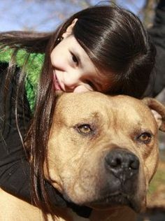 46 Best Shelter Angels Pit Bull Rescue Images On Pinterest