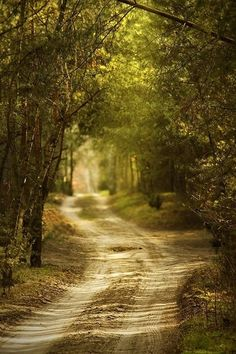 <3 country roads by sondra
