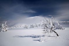 16) Blankets of Snow All Around