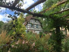 Zu Besuch in dem Privatgarten Herrenmühle. Besuch sehr zu empfehlen!!!!!  Www.waldundco.com