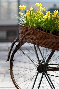 Photo about Old bicycle with basket of flowers in the street of Helsinki, Finland (very shallow depth of field, focus on flowers and basket). Image of cycle, bike, finland - 14353559 Yellow Flowers, Spring Flowers, Old Bicycle, Bicycle Basket, Bike Baskets, Bicycle Decor, Bicycle Art, Shallow Depth Of Field, Yellow Springs