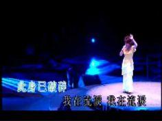 蔡琴 - 意難忘