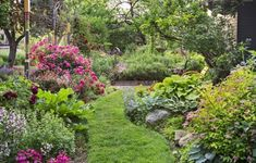 Colorful plantings, winding pathways, and plenty of green screens transform an urban lot that's exposed to passersby on three sides into a private oasis #backyardgardenoasis