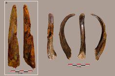 Actualité de l'archéologie : Les fouilles archéologiques à Aranbaltza, site localisé dans la commune de Barrika (Pays basque espagnol), ont révélé plusieurs niveaux d'occupations de Néandertal et de l'outillage en bois.