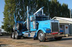 1995 kenworth log truck from Elmira Oregon