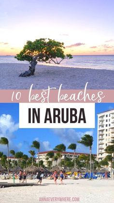 Check out these 10 Most Beautiful Beaches in Aruba. If your perfect vacation includes sunbathing, building sandcastles, drinking colorful cocktails, or swimming in the ocean, then Aruba is just what you need.  Aruba Vacation | Best Beaches | Best Beaches in Aruba | Flamingo Beach in Aruba | Aruba honeymoon