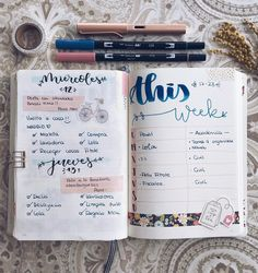 Planner, bullet journal days.