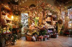 Avantgarden's downstairs garden room.