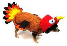 Turkey Costume for Dogs, Thanksgiving Turkey Dog Costume