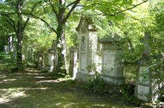 St. Marx cemetery #Vienna (by unknown)