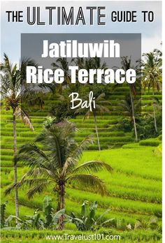 bali indonesia tour package with airfare 2018 Bali Travel Guide, Asia Travel, Travel Advice, Beach Trip, Vacation Trips, Rice Terraces, World Heritage Sites, Travel Around The World, Cool Places To Visit