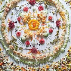 Mandala nature flower You are not your roots. You are a flower grown from them. Wicca, Flower Petals, Flower Art, Mandala Wallpaper, Art Et Nature, Witch Aesthetic, Growing Flowers, Crystal Grid, Mandala Art