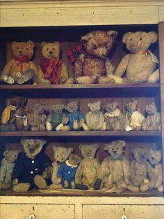 ️Antique Teddy Bear Collection