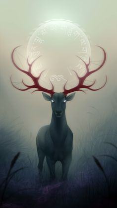 Night Ambience Buck/Deer