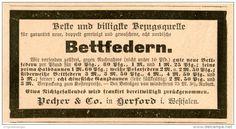 Original-Werbung/Inserat/ Anzeige 1892: BETTFEDERN PECHER & CO. HERFORD ca. 40 x 90 mm