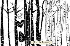 Birch Tree ClipArt - Photoshop Brush by Carrie Stephens on @creativemarket