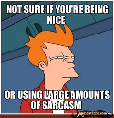 not sure if you're being nice / or using large amounts of sarcasm