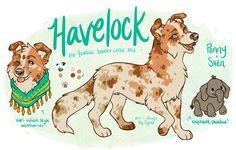 OC: Havelock by ranalligator on DeviantArt Cute Dog Drawing, Cute Animal Drawings, Animal Sketches, Cute Drawings, Amazing Drawings, Animal Design, Dog Design, Anime Animals, Cute Animals