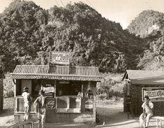 Roadside Bar and Soft Drink Counter Between Bayamón and Vega Alta. October 1945.