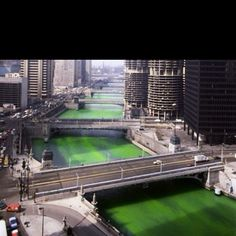 Chicago river- St. Patrick's Day