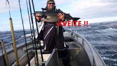 Hallibut Fishing in Lofoten #HattvikaLodge
