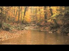 "15min. Autumn Rain - ""Relaxation Series"""