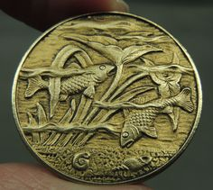 BRASS PICTURE BUTTON ~ SEA LIFE FISH & SHELLS     METAL