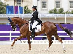 Eye candy of the animal world - these dressage horses or magnificent animals - Eventing Day 1: Aussies, Germans in front - News | NBC Olympics - Karen O'Connor of the US aboard Mr. Medicott during her eventing dressage ride July 29, 2012 London Olympics
