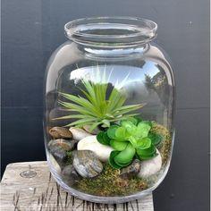 Znalezione obrazy dla zapytania co do dużego szklanego wazonu?