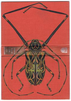 Bugs on Book Covers // Rose Sanderson