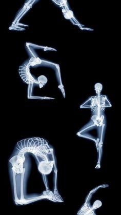 Photo Head Anatomy, Human Body Anatomy, Muscle Anatomy, Anatomy Drawing, Anatomy Art, Body Drawing, Life Drawing, Figure Drawing, Bear Skull