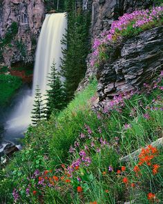 Tumalo Falls is a 97 foot waterfall near Bend, Oregon. It is also a phenomenal trail head for mountain biking and hiking in the Deschutes National Forest.