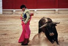 Bull Fight...don't think it was a favorite...but it was very interesting to see this tradition in Spain!