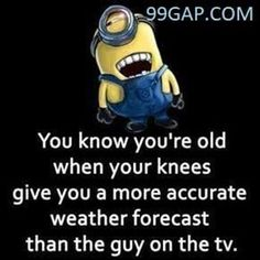 if you want laugh and make some smile on your face.We advise that you just read these Minions Memes men.These if you want laugh and make some smile on your face.We advise that just read these Minions Memes men. are so funny. Minion Jokes, Minions Quotes, Funny Minion, Minion Sayings, Funny Signs, Funny Jokes, Hilarious, Funniest Jokes, Funny Cats
