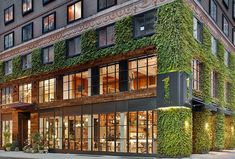 Stay Eco: New York - Organic Spa Magazine