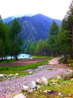 Most Beautiful Natural Place i ever visited. Another view of Kumrat valley. On users request Beautiful Scenery Pictures, Beautiful Photos Of Nature, Beautiful Sites, Nature Photos, Beautiful Places, Beautiful Landscapes, Places To Travel, Places To Visit, Pakistan Travel