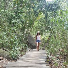 Funny Questions, Sidewalk, Places, Travel, National Parks, Paths, Viajes, Side Walkway, Sidewalks