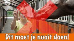 Doe dit NOOIT!! | PaardenpraatTV