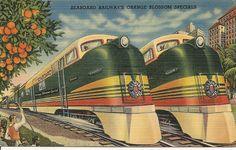 Seaboard Railways Orange Blossom Specials Florida Vintage Florida Postcard